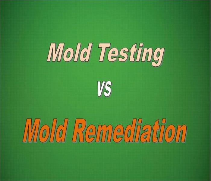 Mold Remediation Why We Do Not Test For Mold-We Only Remediate