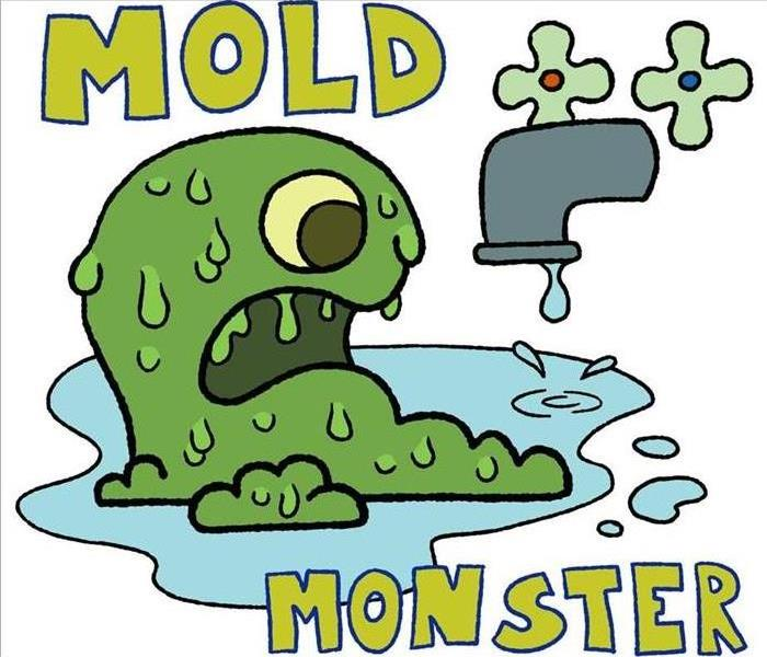 Mold Remediation Does Your Cayce/ West Columbia Home Have a Mold Problem?